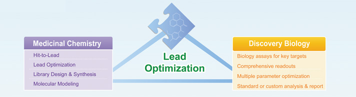 Lead Optimization Service