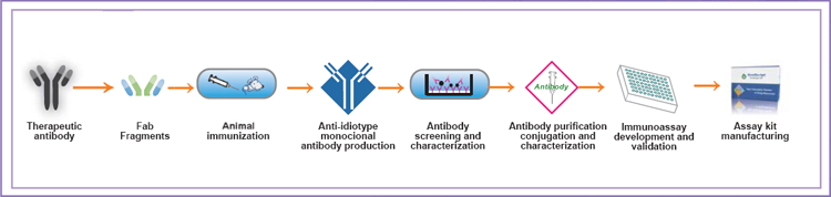 Immunoassay Development Service for Therapeutic Antibody Detection