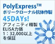 Promotions Polyexpress